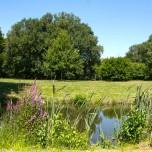 Parklandschaft II