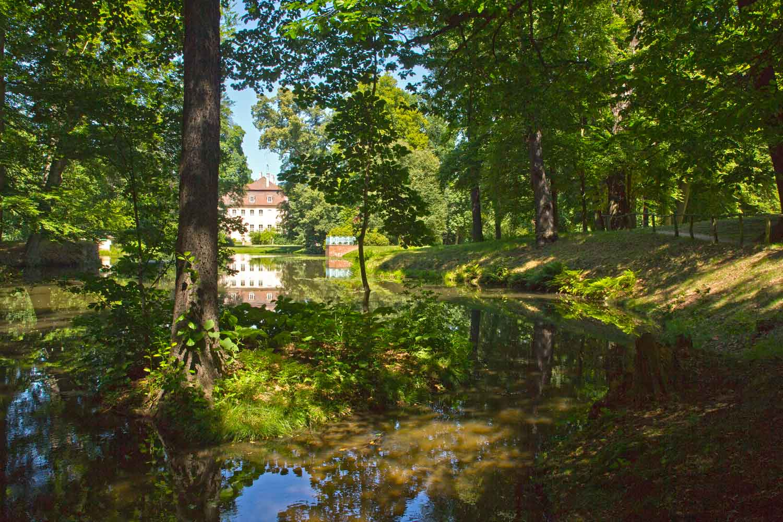 Branitzer Park: Schwarzer See III