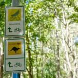 Gurken-Radweg I