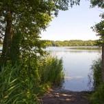 Teich bei Lakoma I
