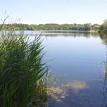 Teich bei Lakoma II