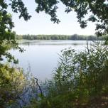 Peitzer Teich I