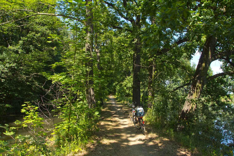 Auf diesem Weg macht Radfahren Spaß