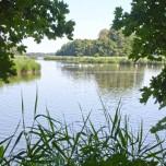 Peitzer Teich IV