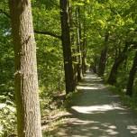 Schöner Radweg I