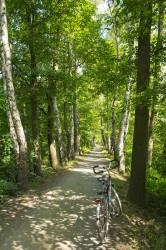 Der schönste Radweg Brandenburgs