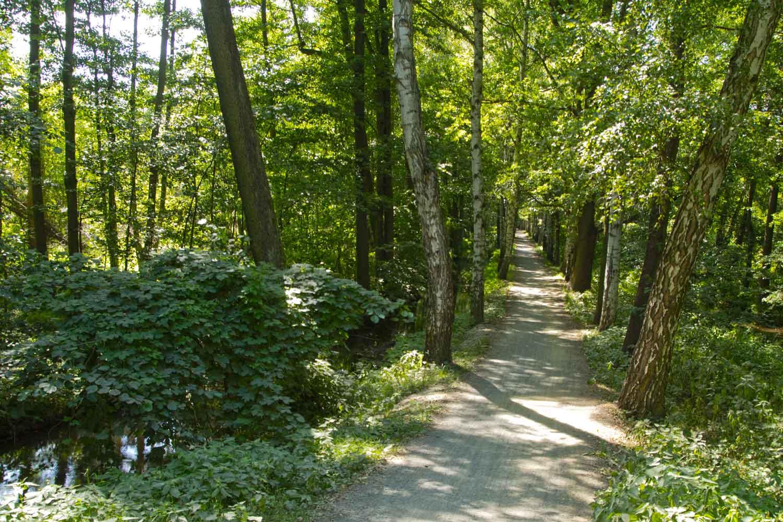 Schöner Radweg IV