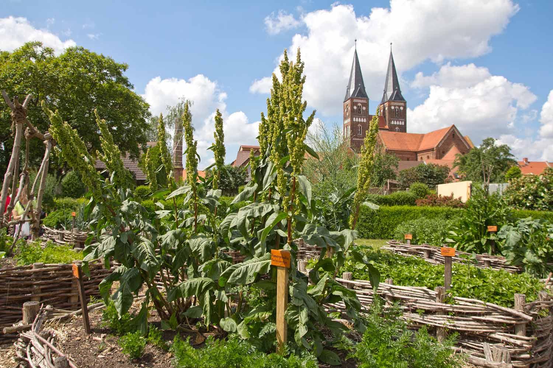 Blick zum Kloster III