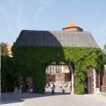 Tor zum Wawel