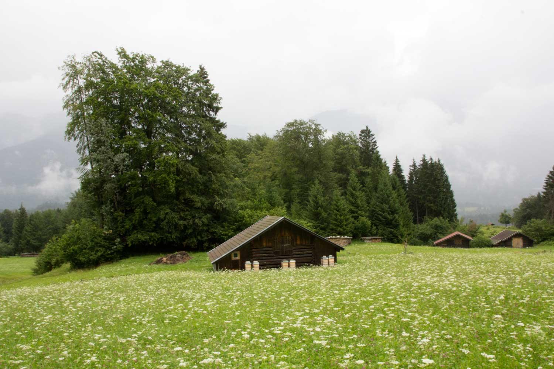 Hütte auf der Wiese