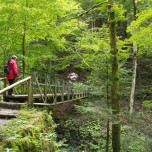 Eiserne Brücke über die Paetnachklamm I