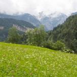 Bergwelt I