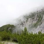 Berghang im Nebel, Alpen