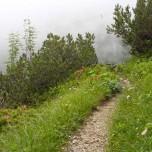 Wanderweg unter Alpspitzbahn