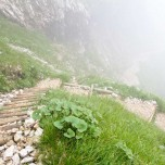 Abstieg vom Hupfenleitenjoch in den Nebel