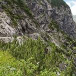 Wanderweg ins Höllental