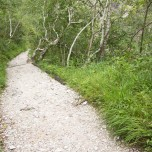 Wanderweg zur Klamm I
