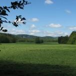 Über Feld und Wiese zwischen Rappelsdorf und KlosterVeßra
