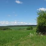 Weitblick Thüringen bei Vachdorf