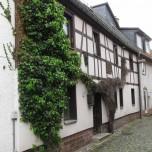 Fachwerk mit Bewuchs in Bad Blankenburg