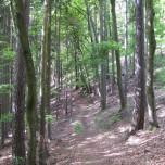 Wanderweg Sitzendorf