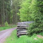 Wanderweg bei Schmiedefeld