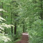 Wanderweg Vessertal
