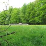 Fasanerie bei Sitzendorf