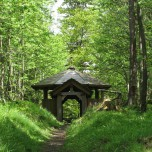 Auf dem Kickelhahn Goethewanderweg