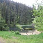 Knöpfelstaler Teich Goethewanderweg