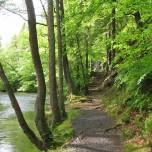 Wanderweg V