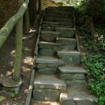 Treppenstufen im Wörlitzer Park