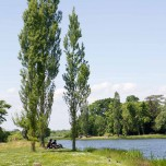 Wörlitzer See