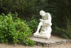 Der Dornenauszieher im Wörlitzer Park