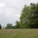 Sichtachse im Wörlitzer Park