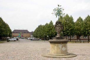 Der Orangenbaum auf dem Marktplatz - das Wahrzeichen von Oranienbaum