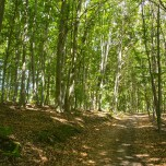 Wanderweg vom Besucherzentrum zum Mittelberg