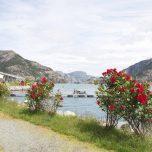Idyllischer Platz am Lysefjord