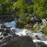 Gletscherfluss des Buarbreen
