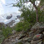 Wegmarkierung am Gletscher Buarsbreen