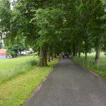 Weg zur Baronie Rosendal