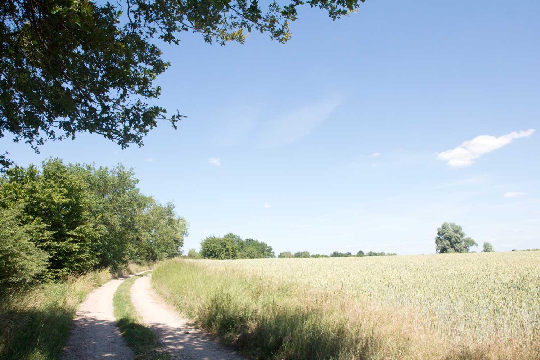 Storchenwanderweg