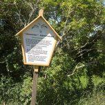 Möweninsel Buhnenwerder