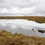 Schneerest Hardangervidda