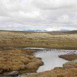 Blick zum Hardangerjøkulen