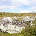 Felsbrocken Hardangervidda