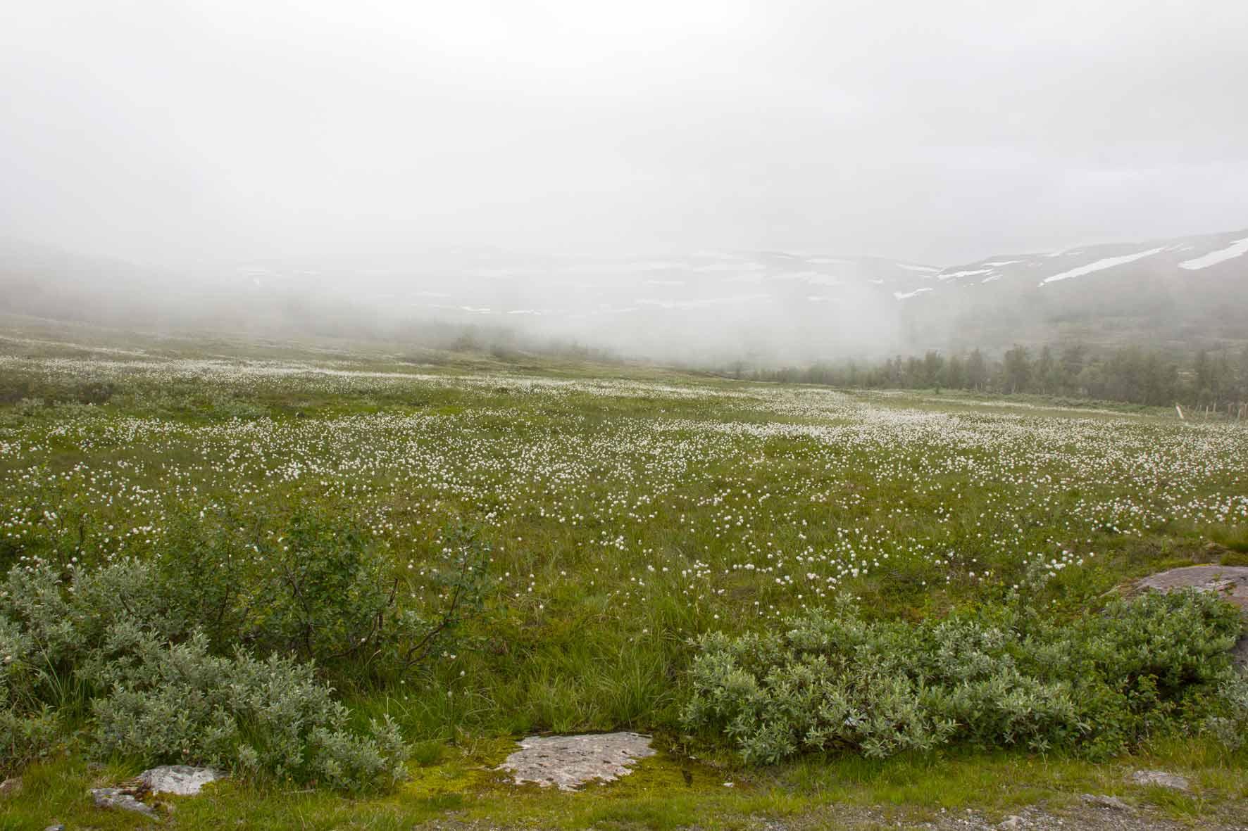In den Wolken auf der Hardangervidda