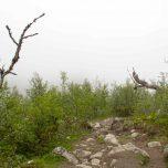 Wanderweg Hardangervidda