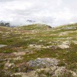 Fjotdalsfjellet Hardangervidda
