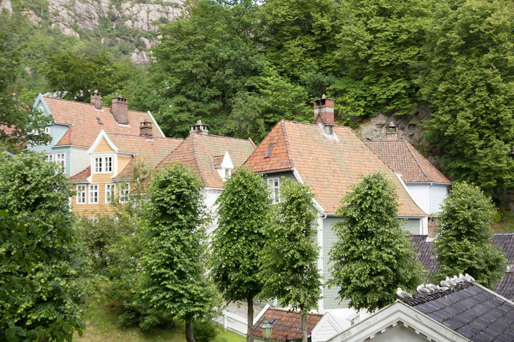 Dächer von Gamle Bergen